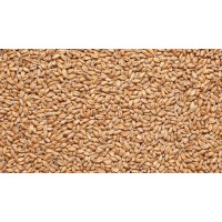 Солод IREKS Wheat Malt dark, 14-18 (Германия)
